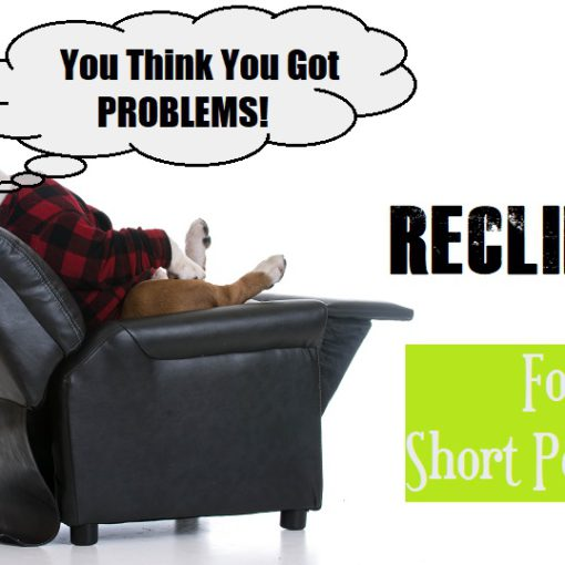 Power Recliners For Short People Lift